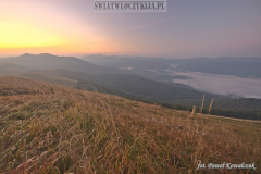 Morning in the Bieszczady Mountains covered with fog