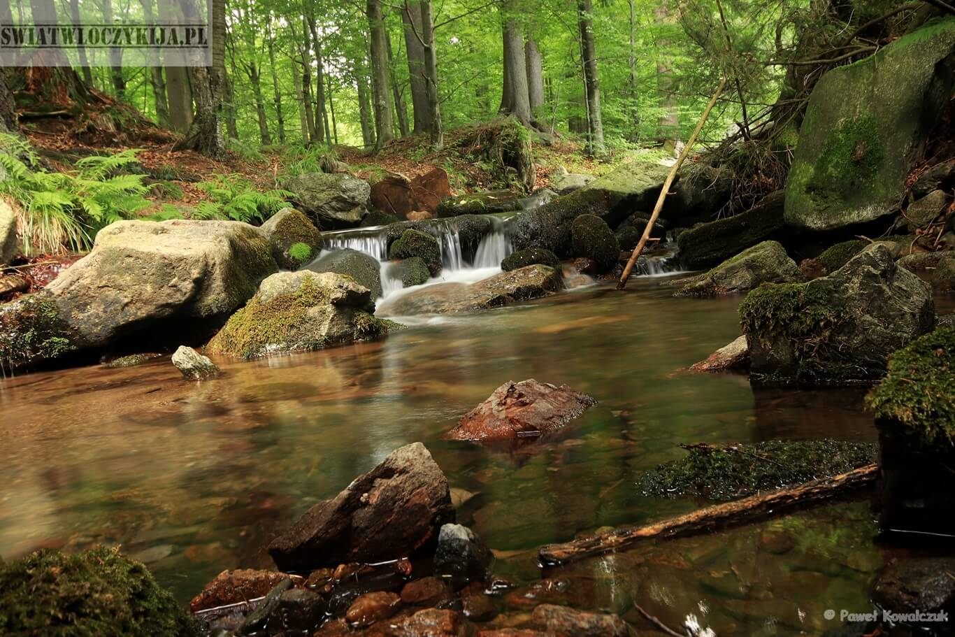 Górski strumień Czarnogórza