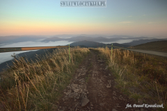 Marked hiking trail in the Bieszczady Mountains leading above the clouds