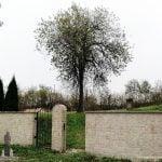 Żydowski Kirkut. Zdjęcie przedstawia ogrodzenie żydowskiego cmentarza. W tle ogromne drzewo