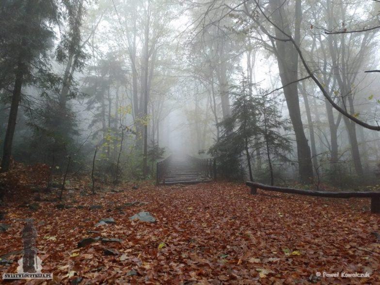 Schody na szlaku na Łysa Górę. Schody spowite są gęstą mgłą