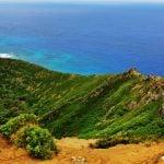 Górzyste wybrzeże Oagu. Na zdjęciu ukazana jest skarpa, pasmo górskie i ocean spokojny na dalszym planie.