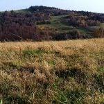 pagórki, lasy i łąki Beskidu Małego na szlaku na Żabią Górę