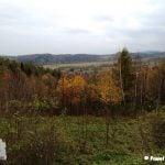 Widok na Beskid Wyspowy. Na pierwszym planie drzewa, potem doliny i góry.