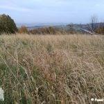 panorama beskidu małego z perspektywy łąki