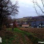 Szlak biegnie miejscami przez pola, trochę przez las i wioskę Klimkówka. Na zdjęciu skraj lasu, pole i w oddali wioska