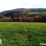 Widok ze szlaku na góre Przymiarki. Dzrewa, łąki i pagórki