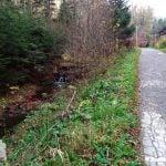 Droga wzdłóż strumyka w okolicach Iwonicza Zdrój