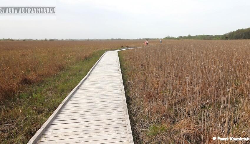 Ścieżka dydaktyczna Czahary. Na zdjęciu drewniany pomost pośrodku torowiska. W tle bagienna panorama Poleskiego Parku Narodowego