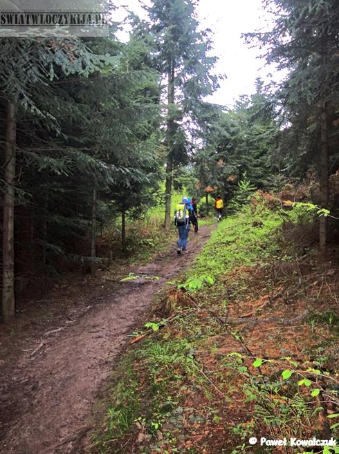 Wspinaczka pod góre. Na zdjęciu widoczne błoto i las. Beskidy.