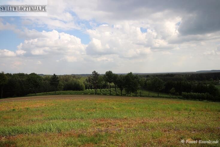 Pola i lasy Roztocza. Na zdjęciu pole łąka i pas drzew