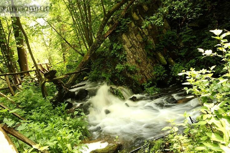 Wodospad i spieniona woda. Wokół bujna zielona roslinność