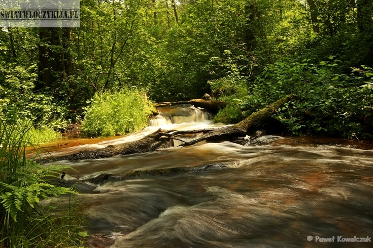Progi wodne na rzece sopot