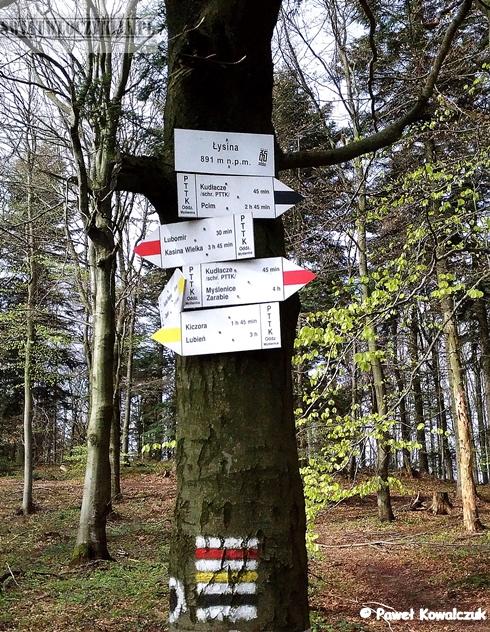 Szczyt Łysina - Beskidy. Na zdjęciu tabliczka inormacyjna i drogowskazy przyczepione do drzewa.