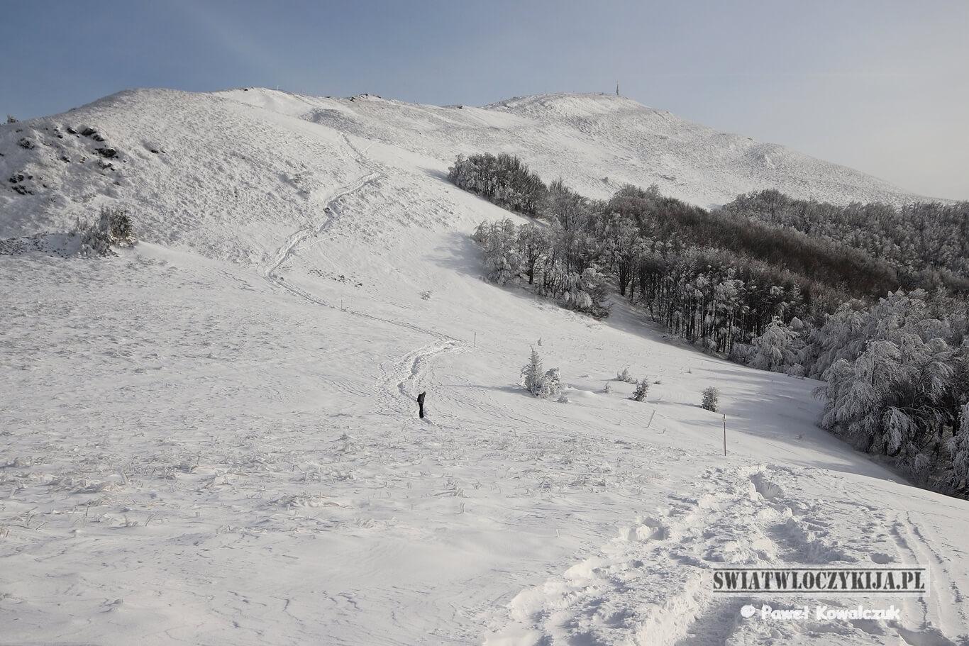 Bieszczady - ośnieżony Smerek. Na zdjęciu podejście na szczyt w zimowej sceneri. Z boku widać zbocze porośnięte gęstym lasem