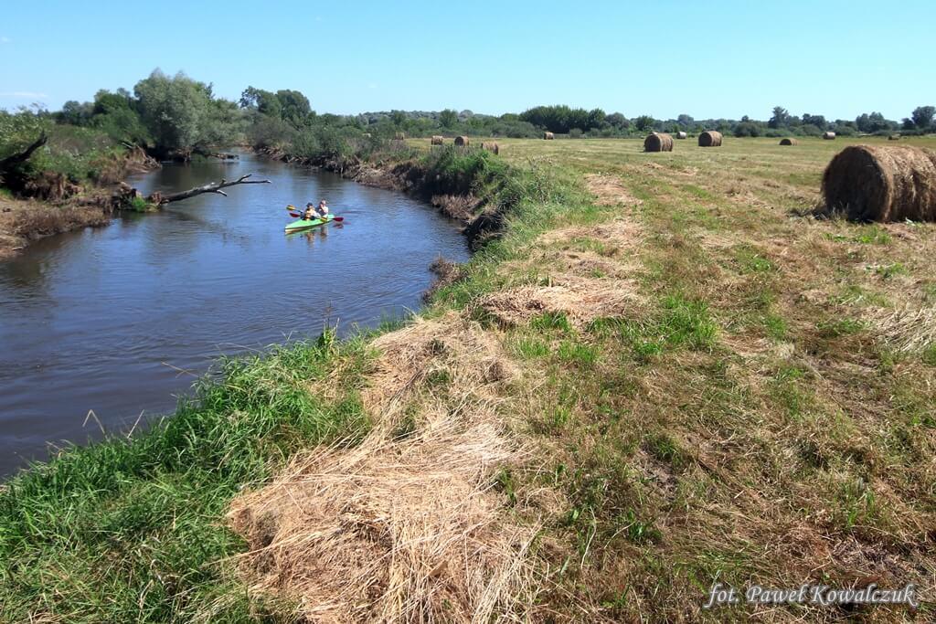 Spływ kajakowy po rzece Krzna nieopodal jej ujścia do Bugu