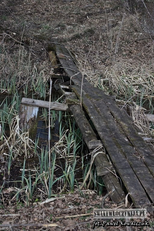 Drewniana kładka obok stawu