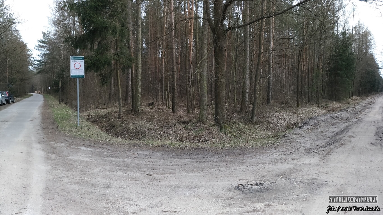 Skrzyżowanie dróg leśnych - Lasy Kozłowieckie